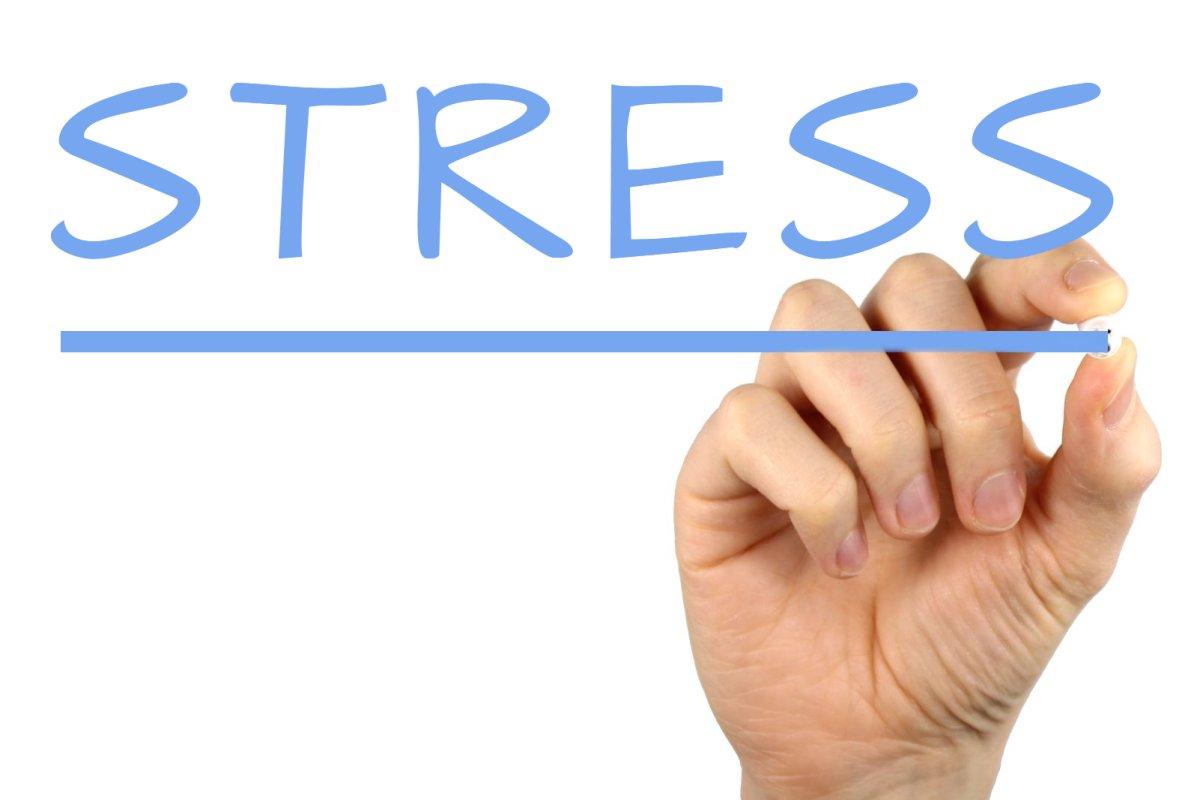 Stress-Dott-Rizzi